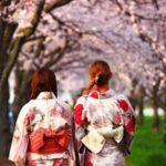 Studiereizen Tokyo Excalibur Tours