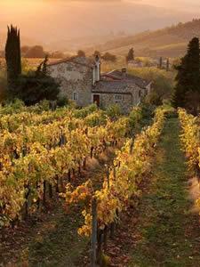 Rondreis door Toscane, Italië, voor scholen en groepen - Reisvoorstel
