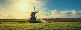 molen-leukstereisjes-nederland