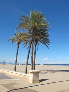 Schoolreizen en groepsreizen naar Valencia, Spanje - Reisvoorstel